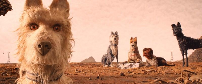 Кадр из фильма «Остров собак»