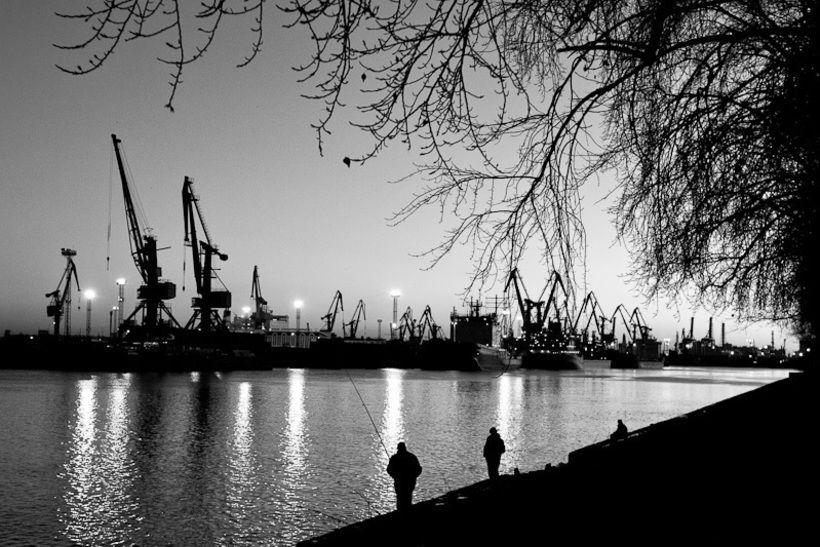 Канонерский остров. Фото: Александр Гавриленко