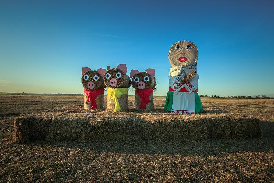 Снимок с фестиваля Дажынкi-2013. Фото: Александр Васюкович