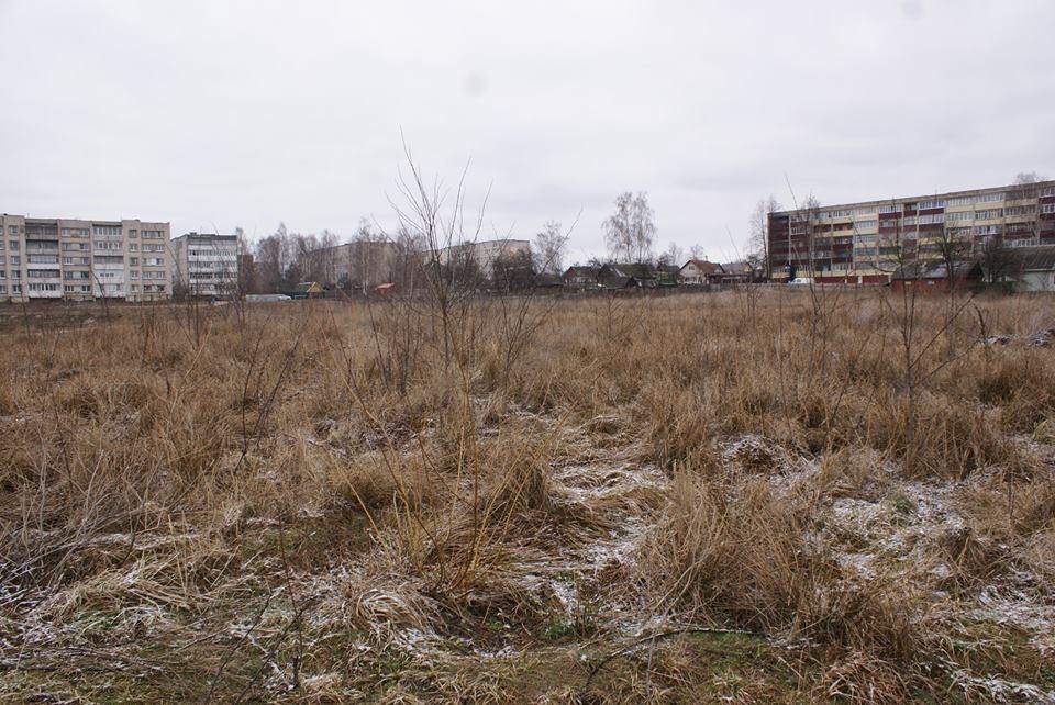 Центральный парк в Рогачёве, который должны были обновить к 2012 году, фото: novychas.by