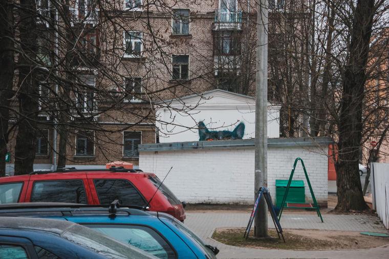 Уши закрашенного ныне кота были видны входящему во двор на Захарова