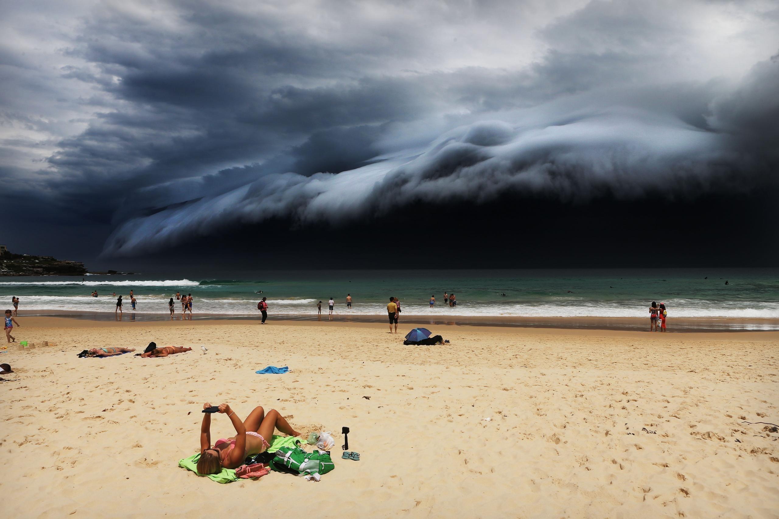Первое место в категории Nature Singles. Автор: Rohan Kelly, Австралия. Ноябрь, 2015