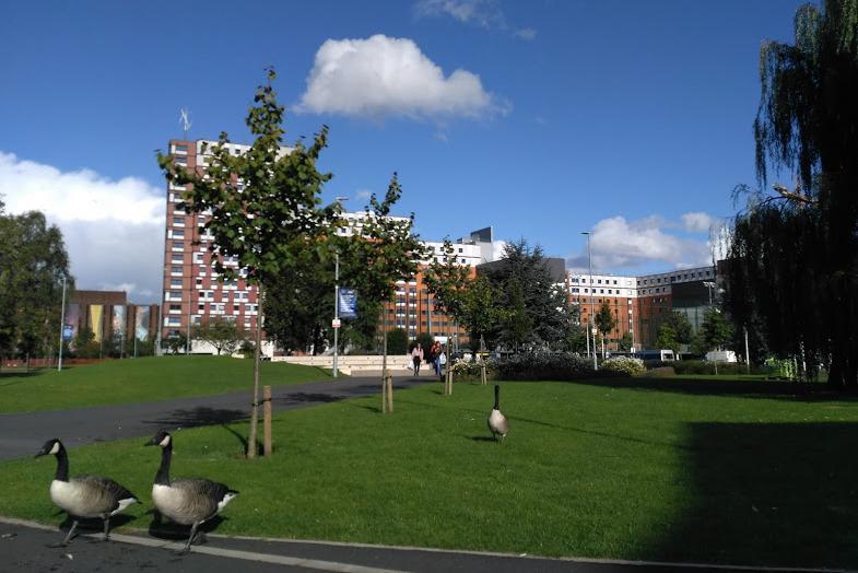 Вид на кампус университета
