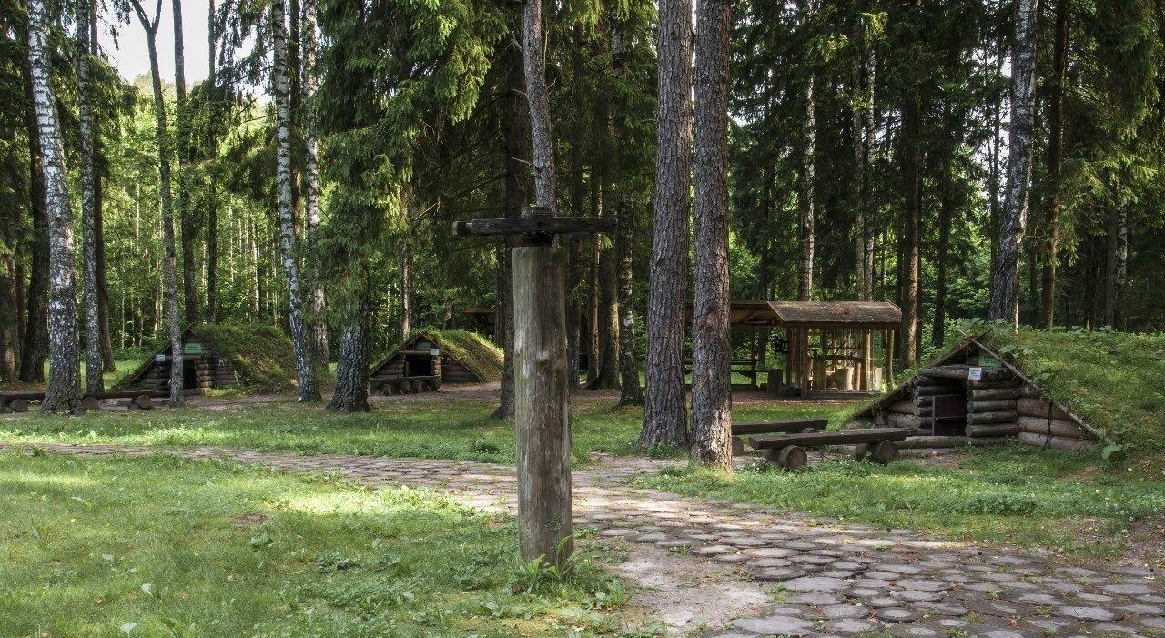 Партизанский лагерь в Станьково, фото: ecopark.by