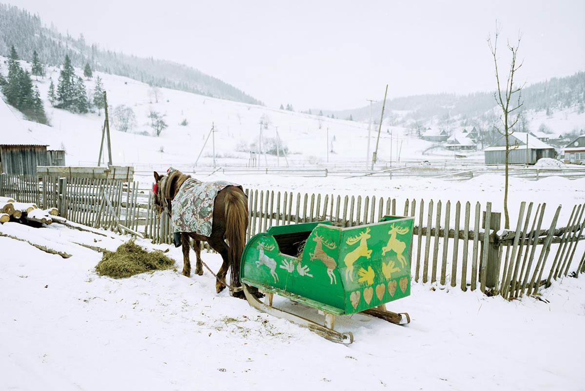 Фото: Jan Brykczynski
