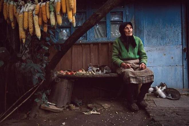 Фото: Виктория Сорочински