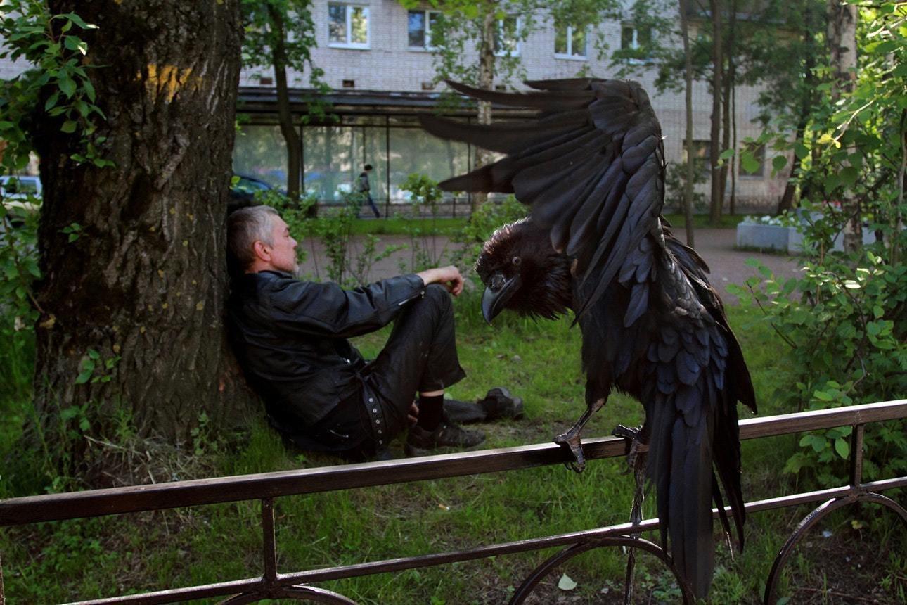 фото: Владимир Троян