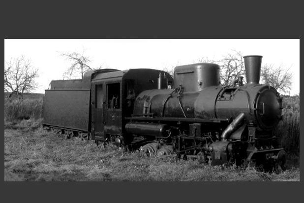 Вот он, тот самый паровоз — с Нарочи, списанный с ДЖД)