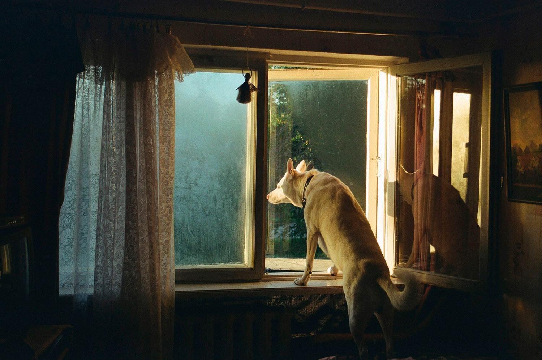Катрина Кепуле. Из проекта «Сиди тихо»